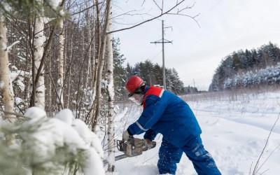Вальщик леса 4 разряда, 3 уровень квалификации Оператор кустореза, мотокосы, переподготовка